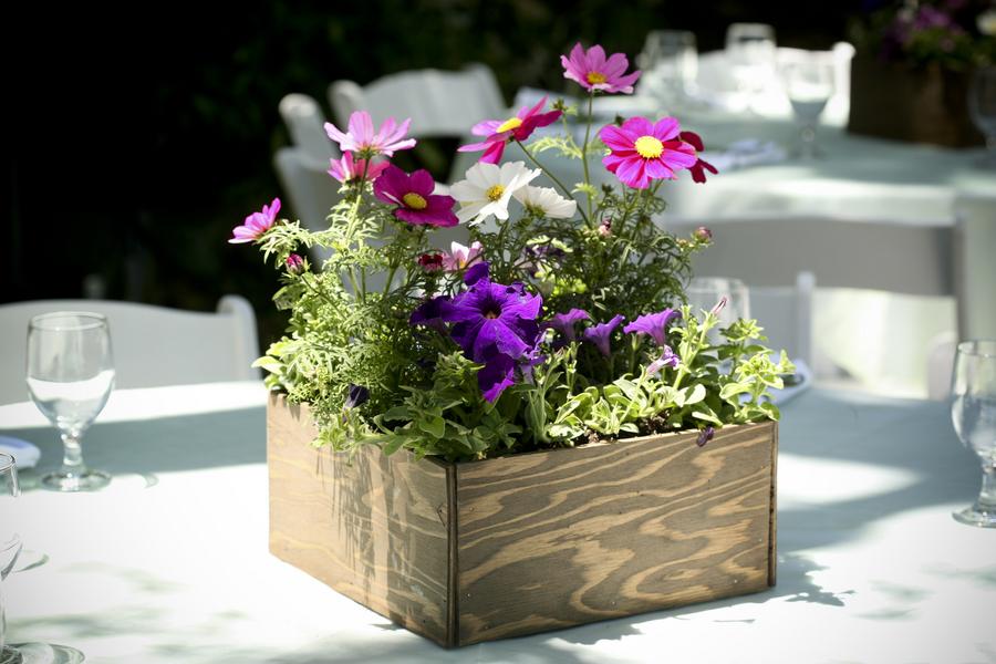 Sweetgrass social event design eco friendly wedding