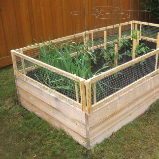 Vegetable Gardening With Mike The Gardener How To Make A Removable Rabbit Proof Fencing