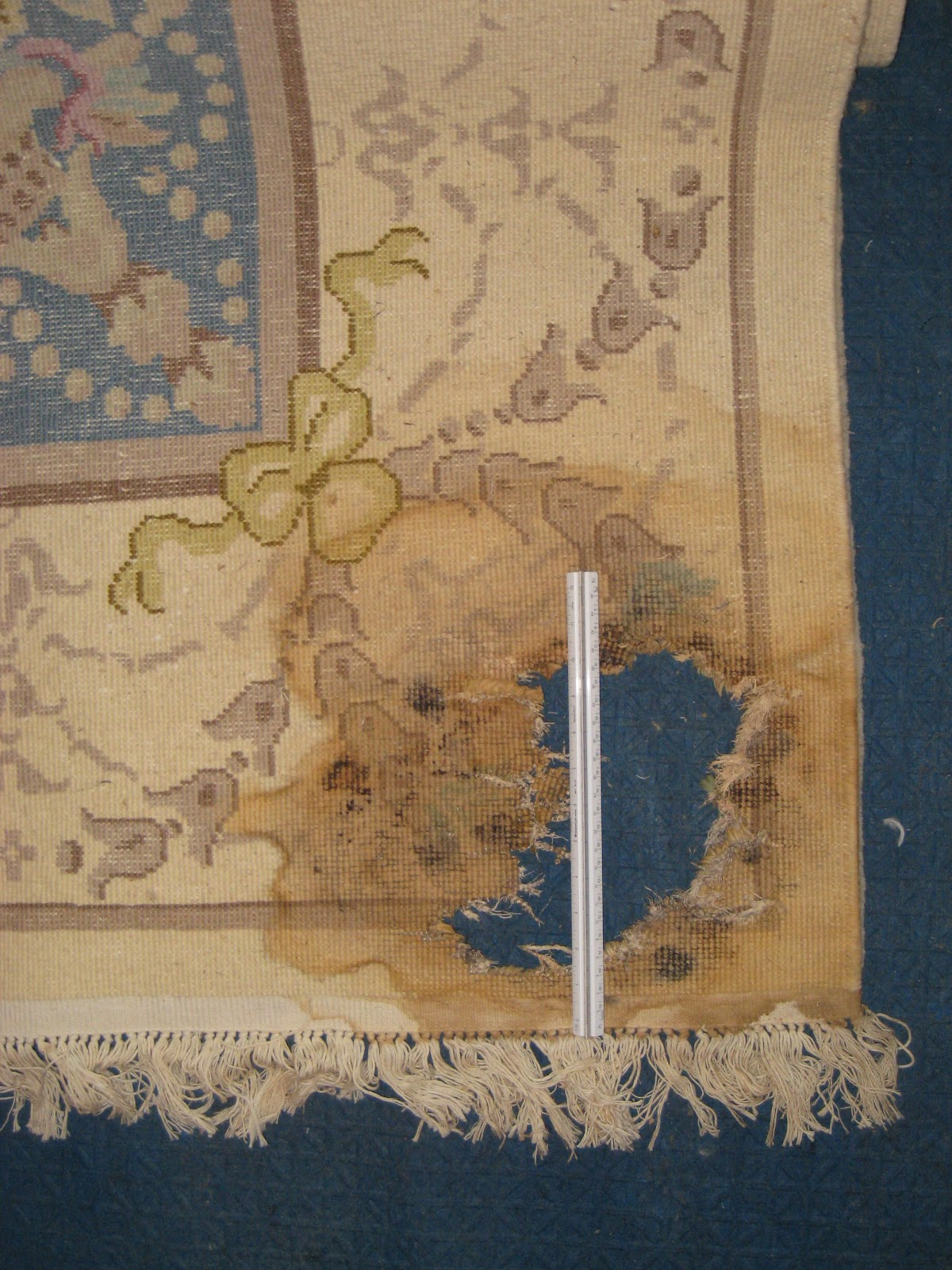 Water Damaged Rug Due To Improper Plant Installation