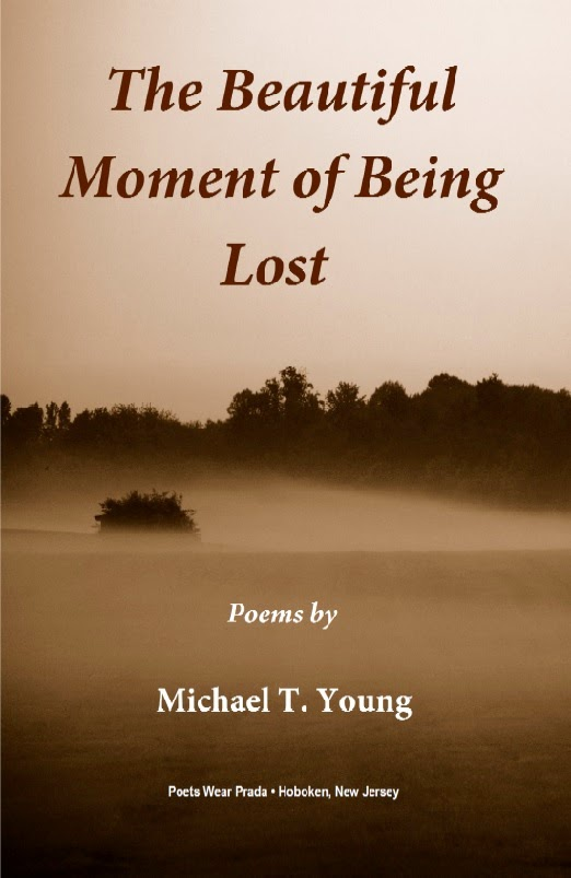 THE BEAUTIFUL MOMENT OF BEING LOST by Michael T. Young