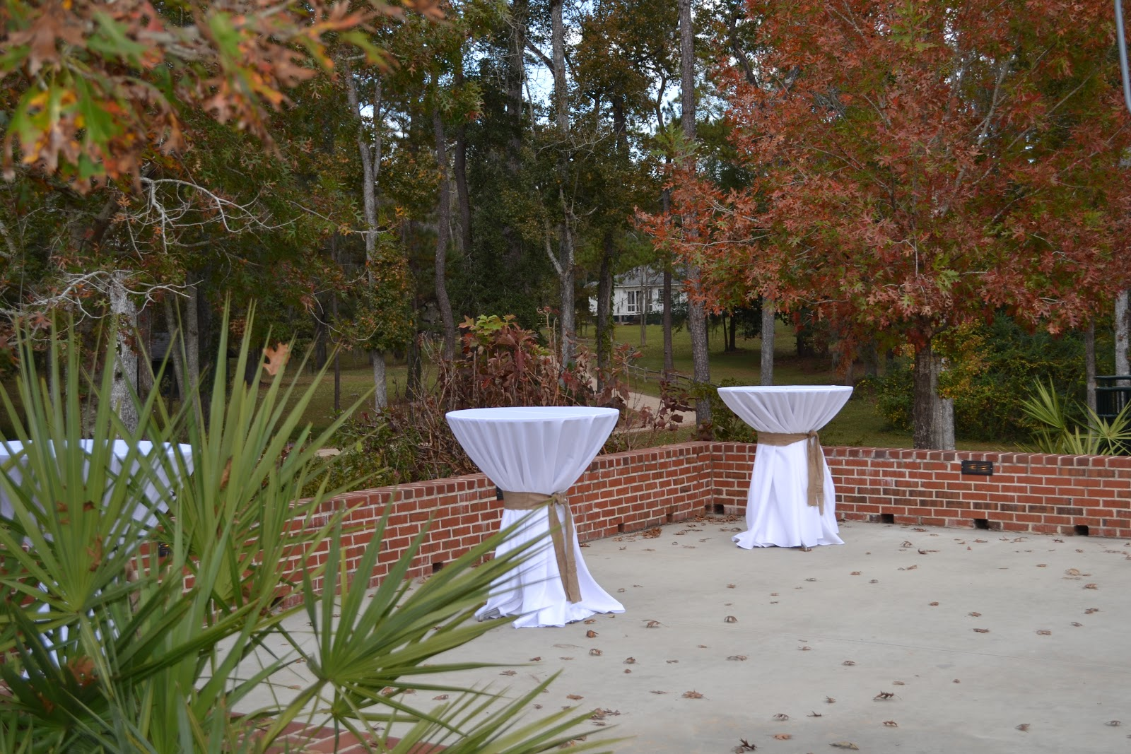 Canopy Rose Catering Company 850-539-7750: November 2012