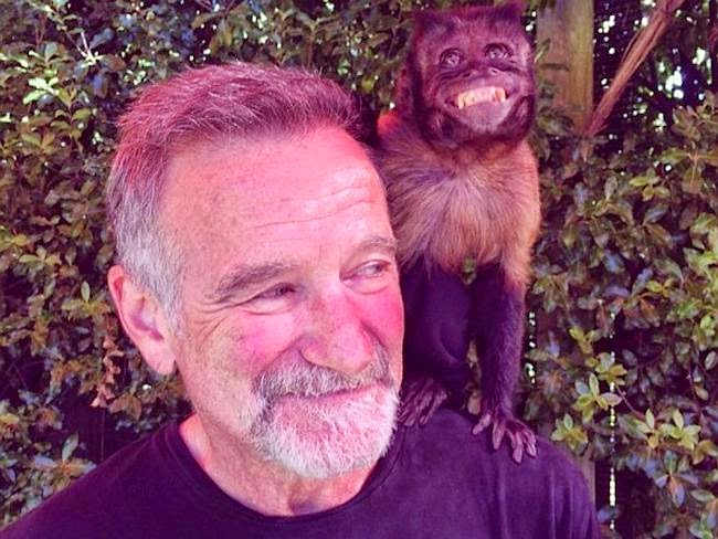 robbin williams com macaco