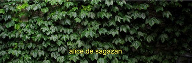 ALICE DE SAGAZAN