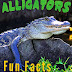 Alligators! Fun Facts About Alligators - Free Kindle Non-Fiction