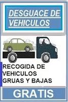 RECOGIDA DE VEHICULOS GRATIS