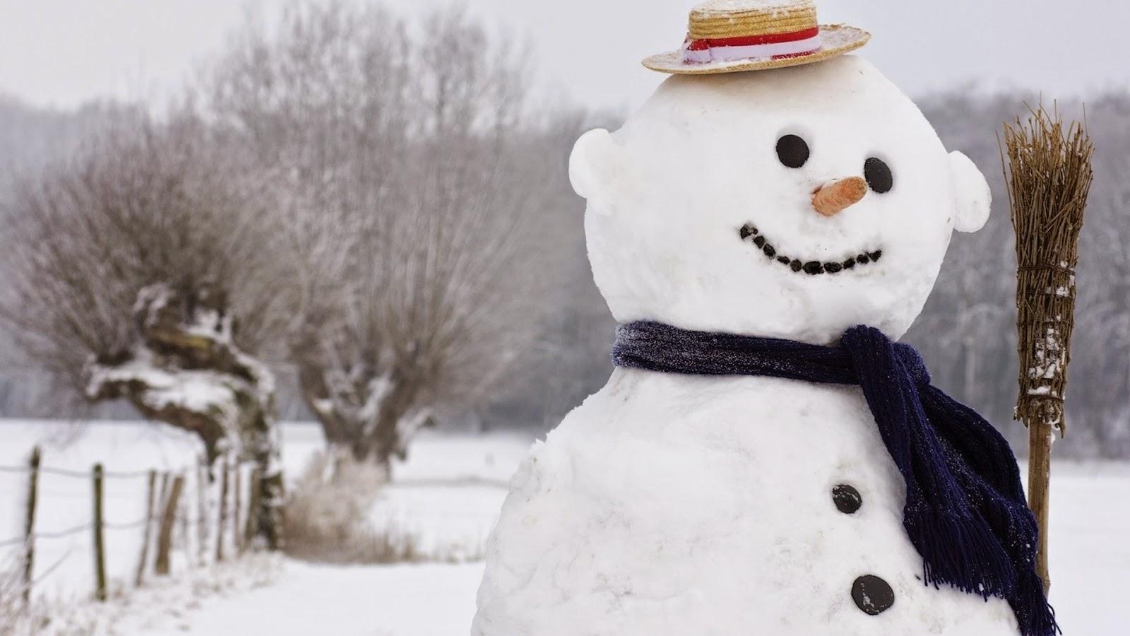 so-cute-snowman-doll-home-made-outdoor-costume-design-theme-wallpaper-HD-image.jpg