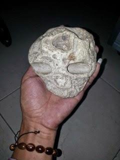 Batu Tengkorak