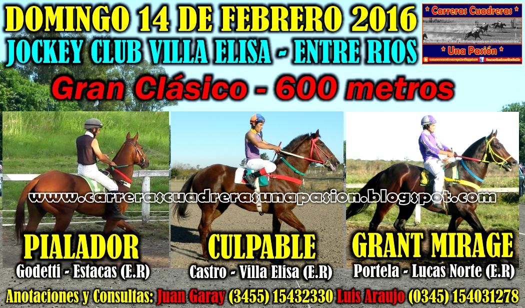 VILLA ELISA - CLASICO 600