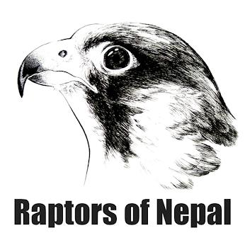 Raptors of Nepal