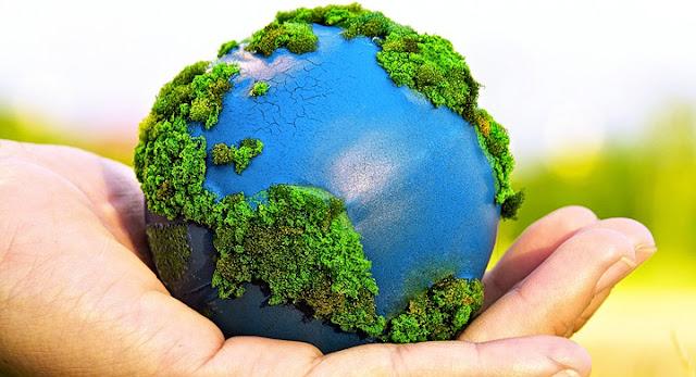 historia medio ambiente 1972:
