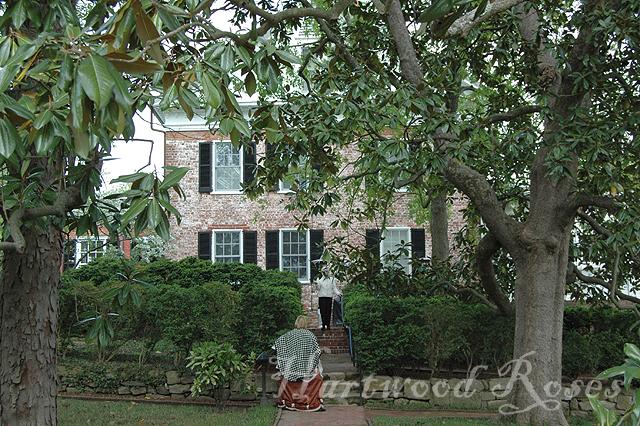 Hartwood Roses Historic Garden Week Fredericksburg Home