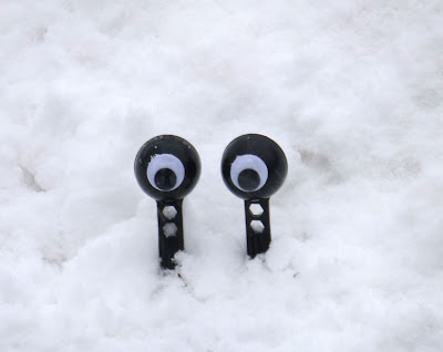 googly eyes hiding in the snow