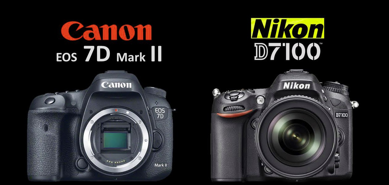 Top 10 Best DSLR Cameras For Photography Professionals