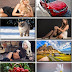 LIFEstyle News MiXture Images. Wallpapers Part (418)