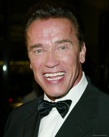 arnold schwarzenegger wife name. schwarzenegger wife name.