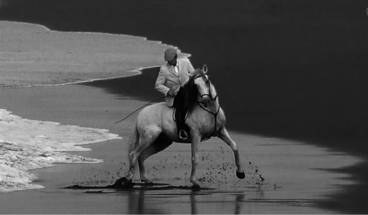 Cavaleiro e sua Montada