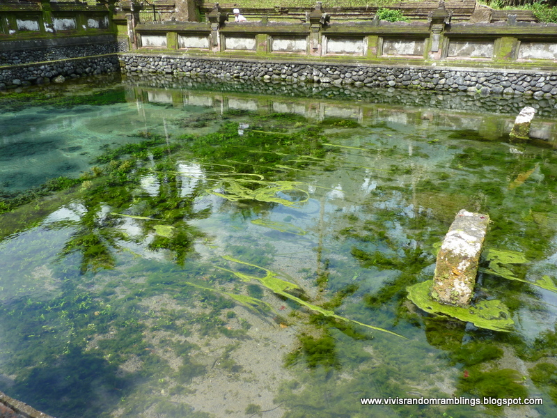 Pool of the Sacred Water at The Temple of Holy Water, Bali