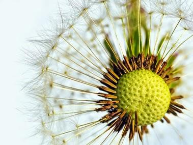 Aire acondicionado en la vivienda: el mejor aliado contra las alergias