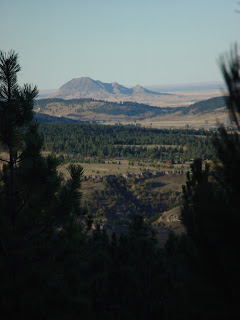 Black Hills View Lot photo by Lee Alley