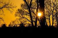 Perpindahan Panas - Matahari