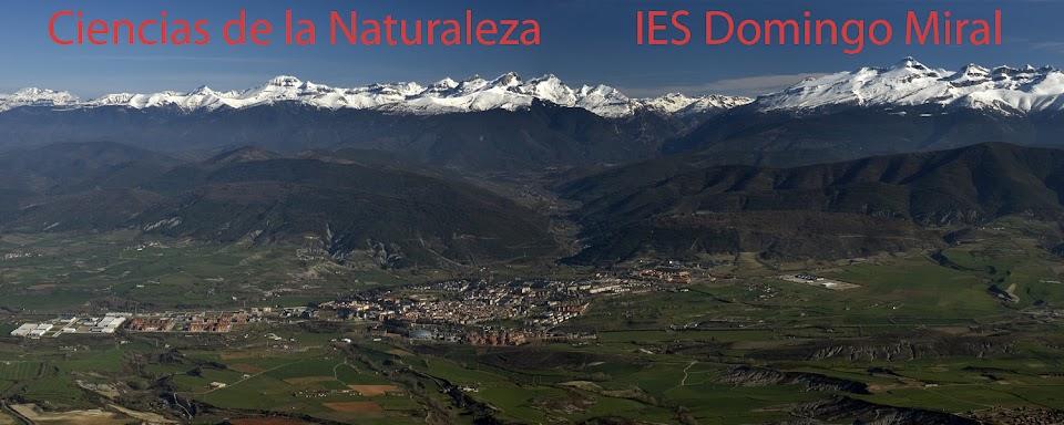 Ciencias de la Naturaleza               IES Domingo Miral