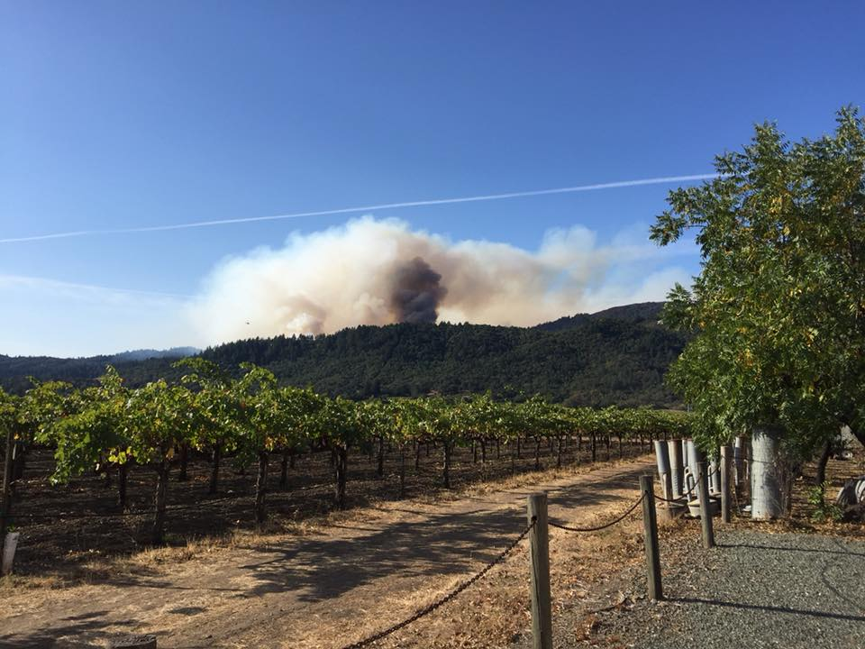 St. Apollinaris Napa Fire Relief Fund