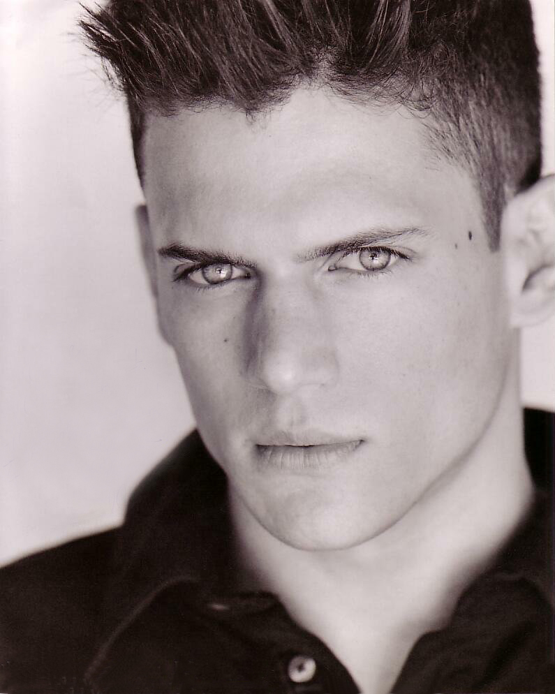 Wentworth miller dick