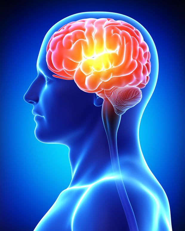 Scientists have identified a key molecule responsible for triggering the chemical processes in our brain linked to our formation of memories. The findings reveal a new target for therapeutic interventions to reverse the devastating effects of memory loss. (Credit: © pixologic / Fotolia)