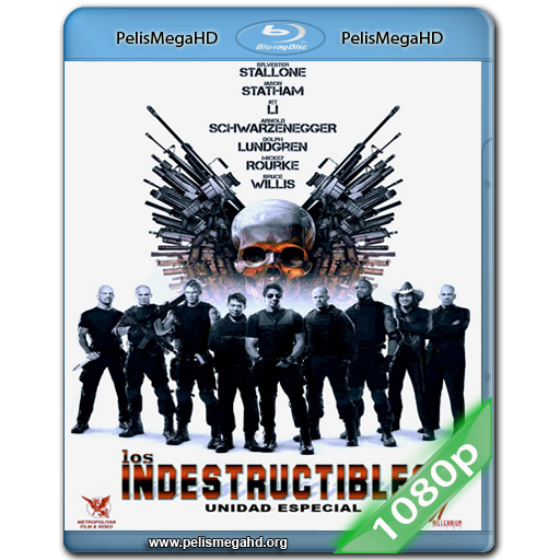 LOS INDESTRUCTIBLES (2010) FULL 1080P HD MKV ESPAÑOL LATINO
