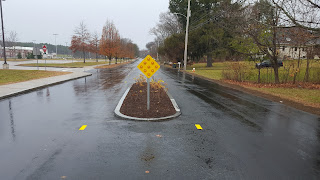 new traffic calming island on Oak St