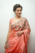 Hamsa Nandini photos at Legend audio-thumbnail-9