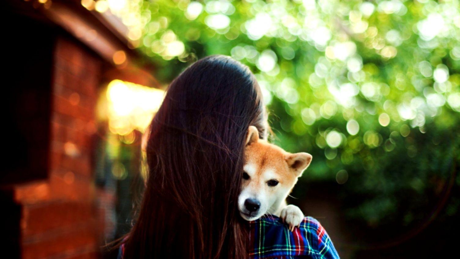 mood brunette girl dog bokeh hd wallpaper  Wallpaper 4K