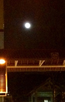Ang Mo Kio @ 8.53 malam