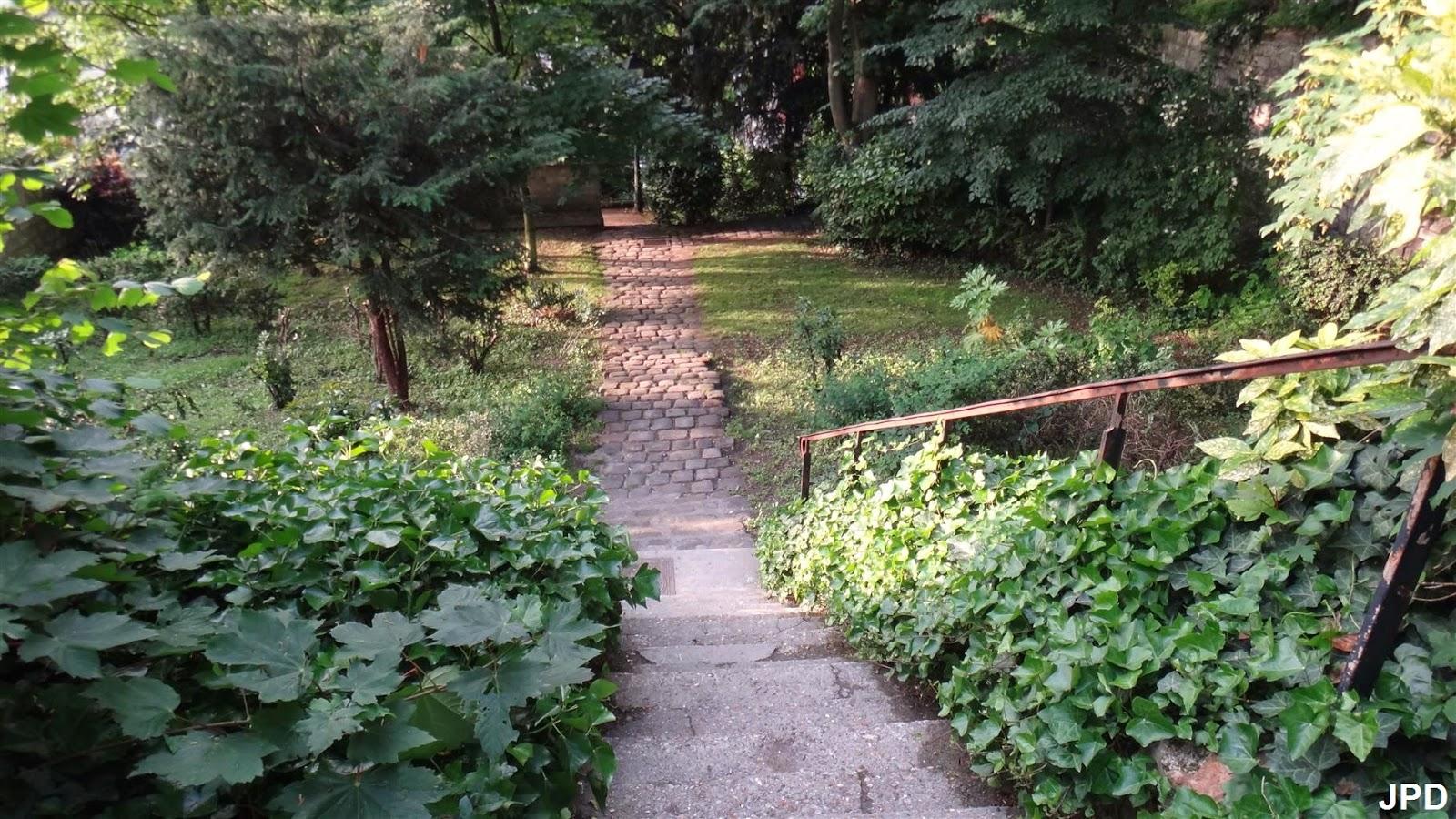 Paris Bise Art Jardin Sauvage Saint Vincent