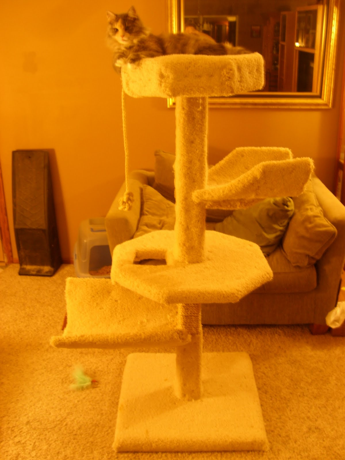 How to make a large cat tree condo house for 50 for How to make a cat tower