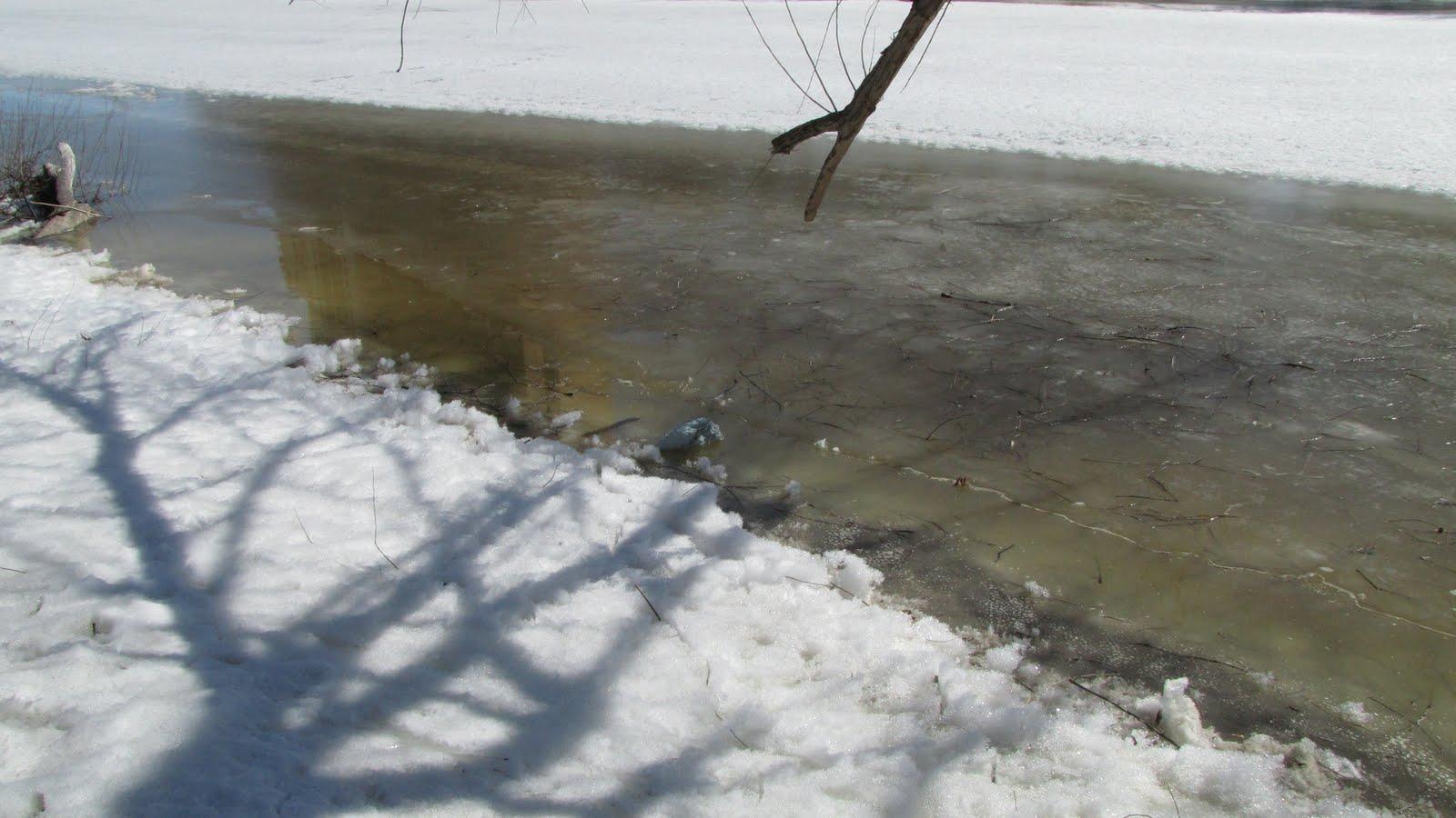 frozen inertia