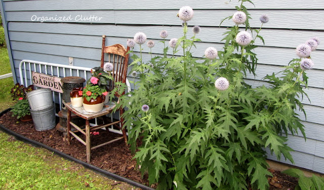 Vintage Garden Junk Decor and Globe Thistle