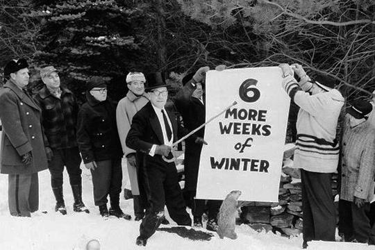 Sam Light, expresidente del Club de la Marmota de Punxsutawney, posa con un sustituto de peluche para Phil en 1961 - Cine de Escritor