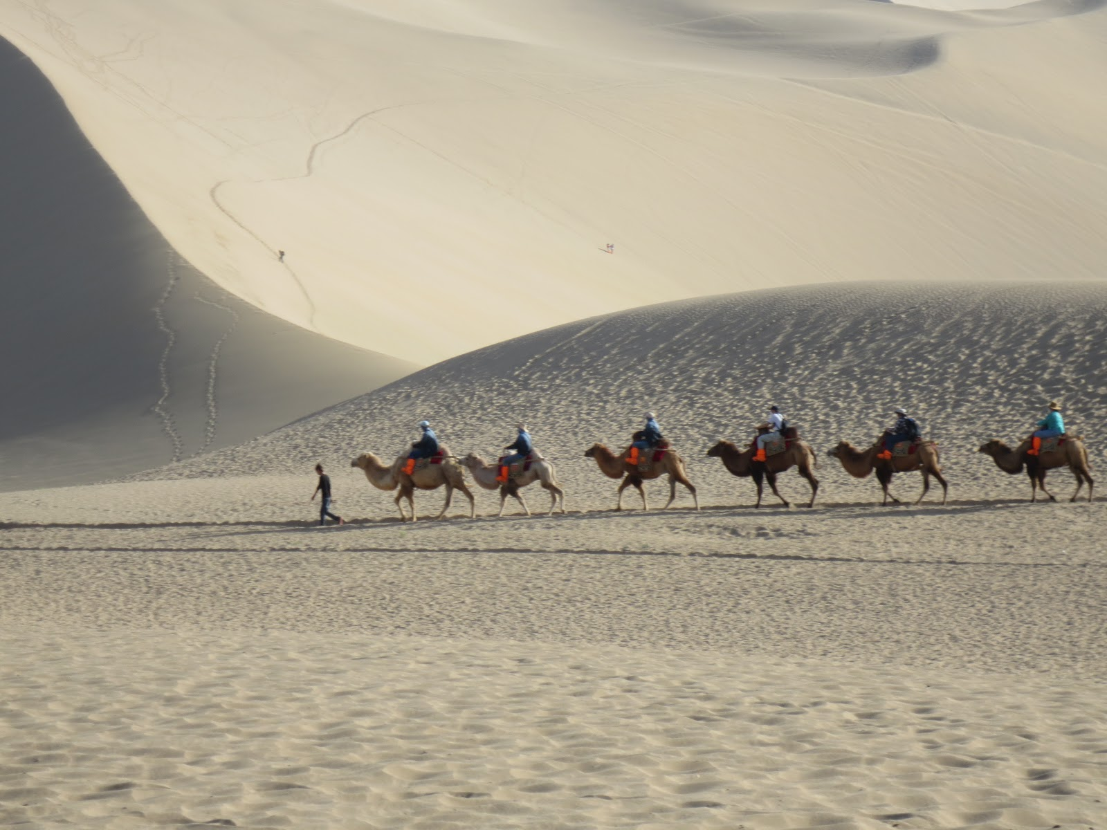 Awesome Dunhuang Sand Camels And Grottoes