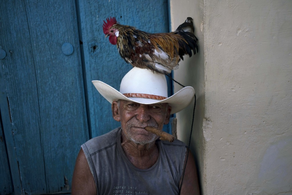 70 Of The Most Touching Photos Taken In 2015 - A man named Jose poses with his rooster named Luis to be photographed for tourists in Trinidad, Cuba. This year, the US embassy in the country reopened for the first time in 54 years.