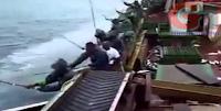 Gila Mancing Ikan Cakalang Seru Banget