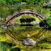 Japanese Garden Design Bridge