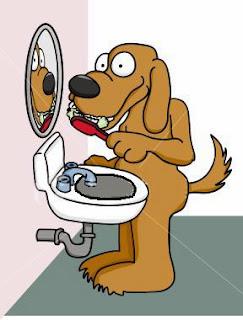 cãezinhos escovando os dentes