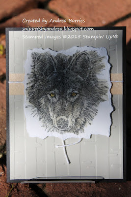 Masculine card made with Wolf stamp set.
