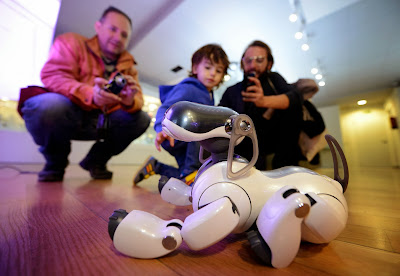 Dog, Robot, Museum, Technology, Madrid, Robotic, Dance, Toy, Children, Gangnam Style, Entertainment, Spain, World, Collection, Pet, Animal, Beagle, Asimo, Honda, Human,
