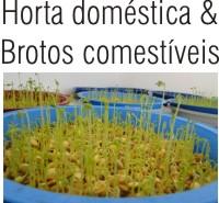 HORTA DOMÉSTICA E BROTOS COMESTÍVEIS