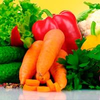 zanahoria, lechuga, pepino, verdura, color