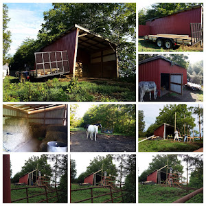 Raising a neighbor's barn