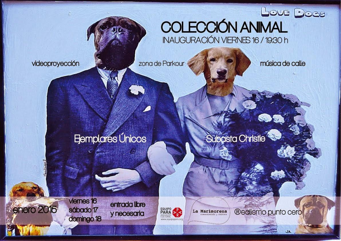 Colección Animal/ ®ealismo punto cero/ Enero 2015