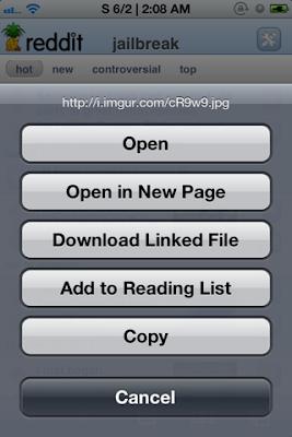Safari Download Enabler (1)